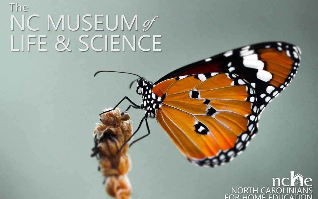 Museum of Life & Science Field Trip