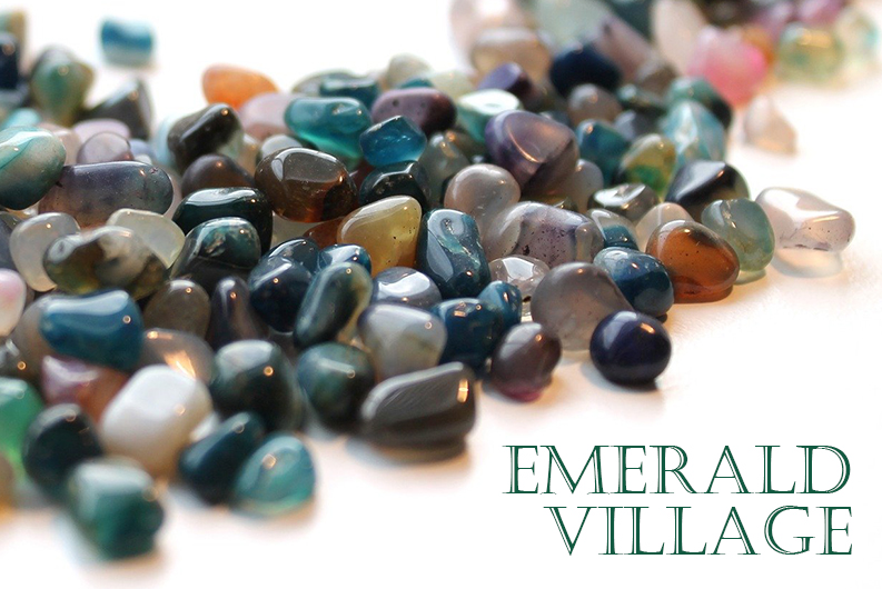Emerald Village Field Trip