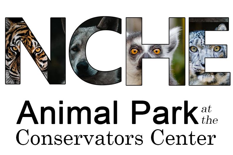 Animal Park Field Trip